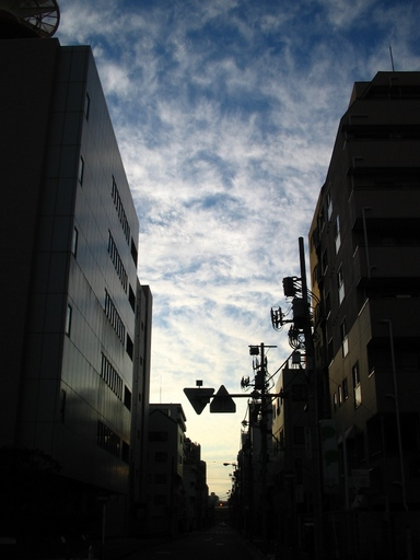 IMG_1490_11.JPG